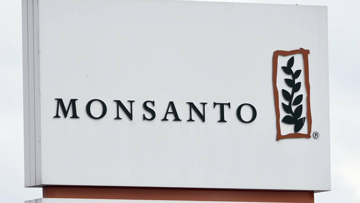 """Fichiers Monsanto: Bayer n'avait """"pas connaissance"""" de ces documents"""