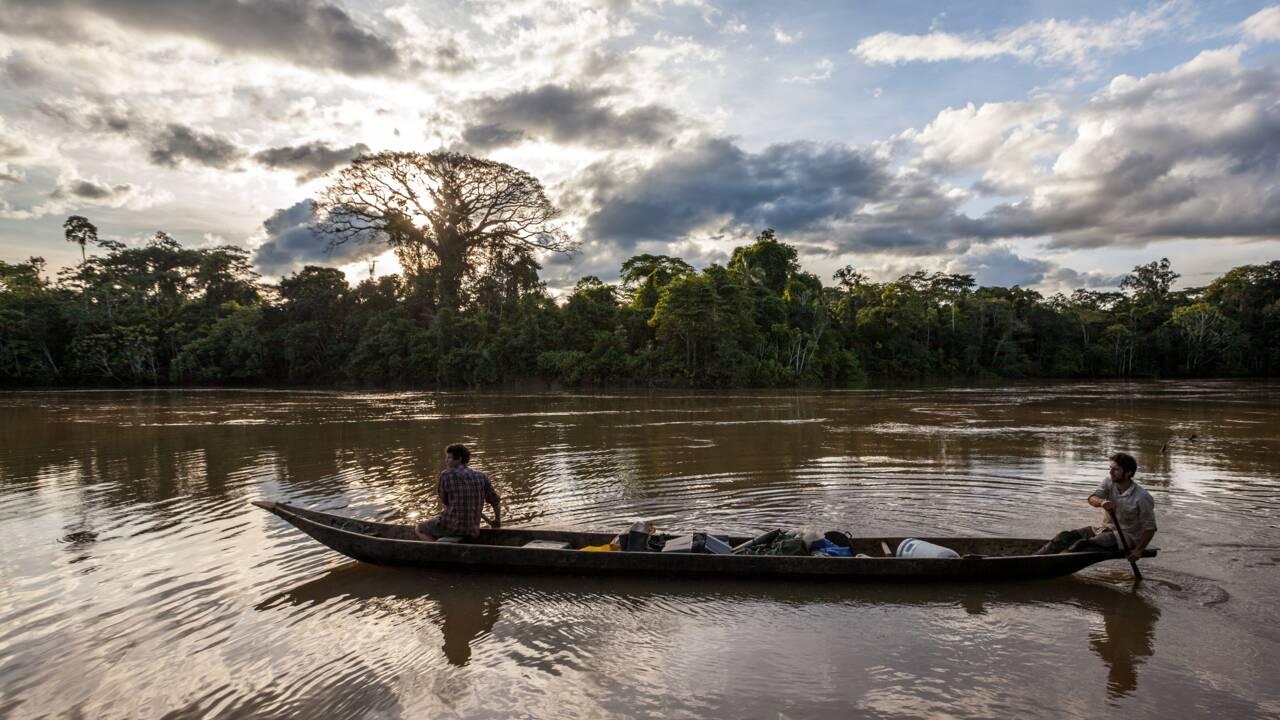 Pirogue, piranha, singe bouilli… Jungle trip en Amazonie équatorienne chez les Waorani