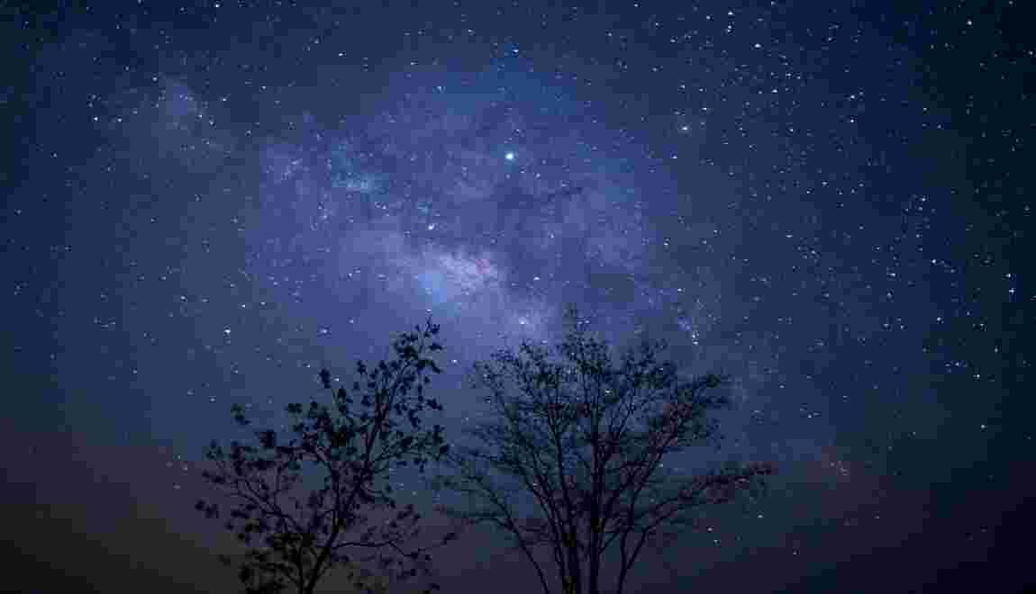 Parc du Mercantour: bientôt davantage d'étoiles et de chauves-souris ?