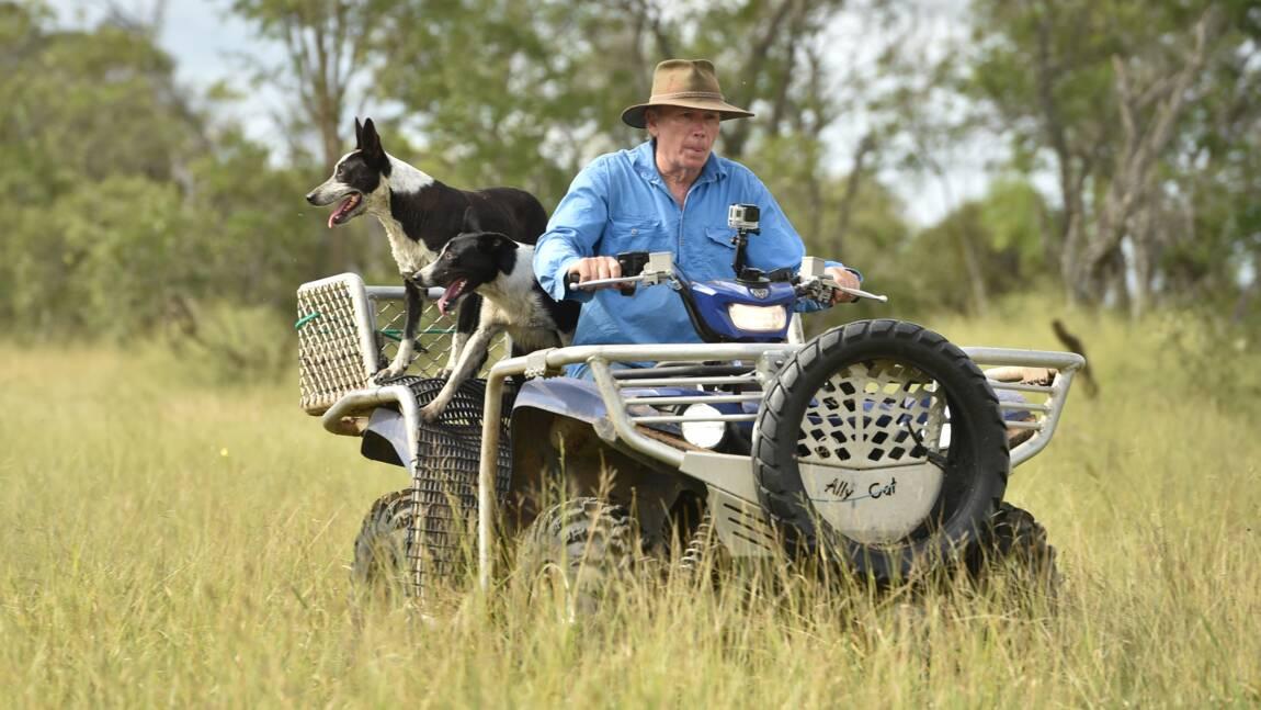 Australie: des fermiers du Queensland à la pointe du combat climatique