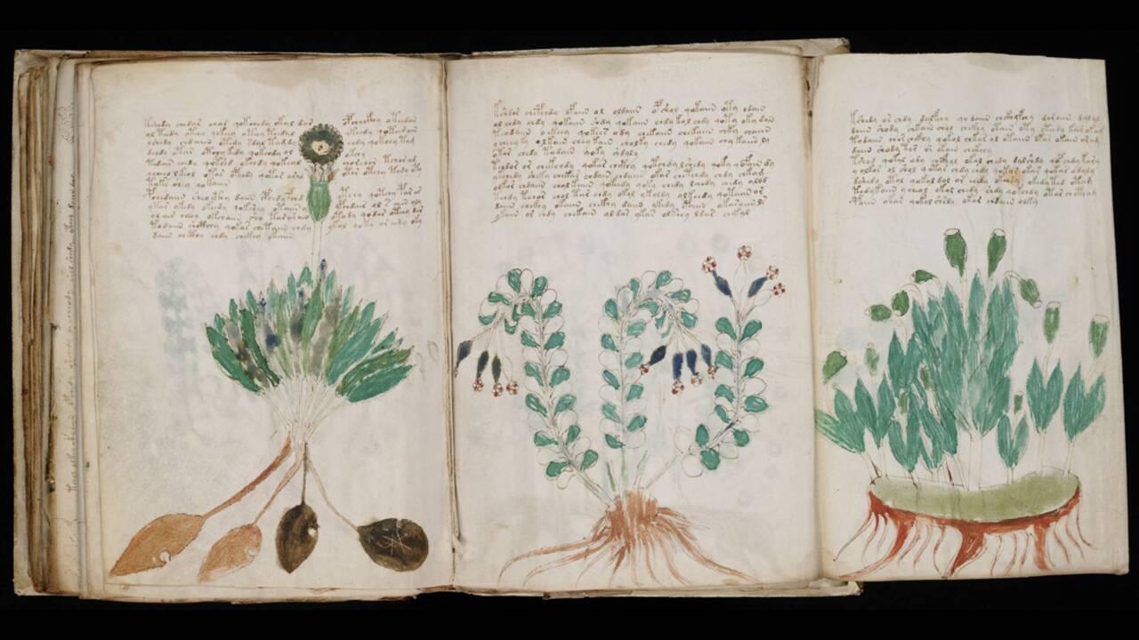 Un chercheur pense avoir décrypté l'un des manuscrits les plus mystérieux au monde