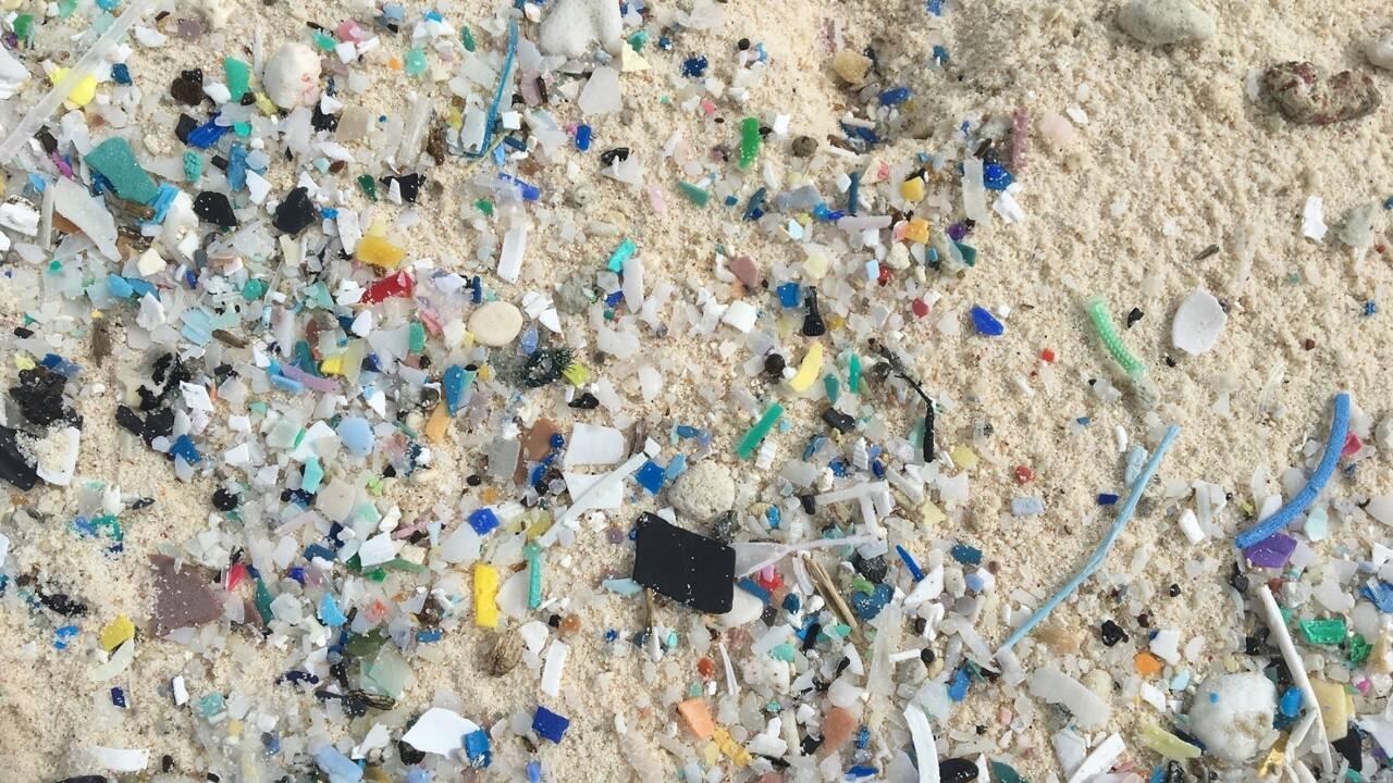 Des tonnes de plastiques sur un archipel du bout du monde