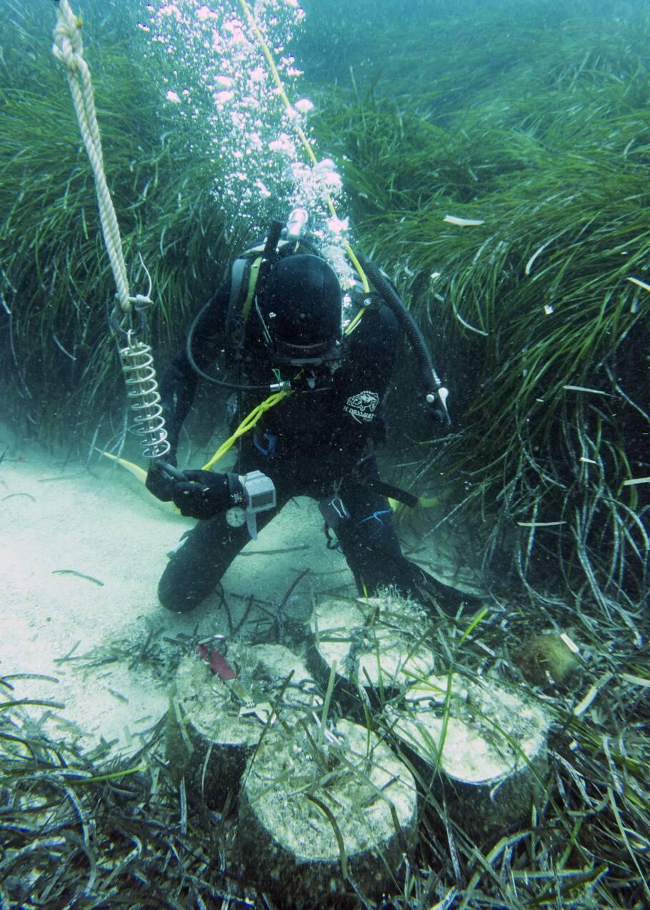 A Cannes, la fin d'un faux récif de vieux pneus, une hérésie environnementale