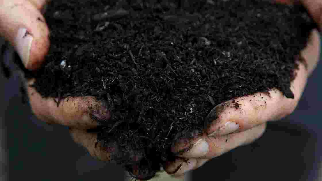 """Enterrement alternatif, le """"compost humain"""" légalisé dans un Etat américain"""