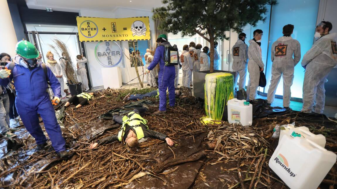 """Des militants reproduisent une """"nature morte"""" chez Bayer-Monsanto"""