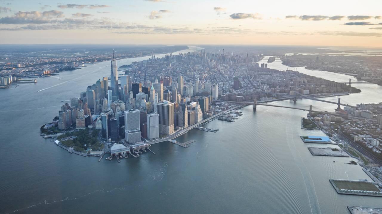 À New York, un milliard d'huîtres réintroduites pour restaurer l'écosystème de la baie