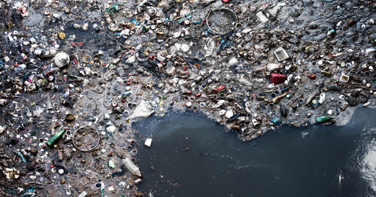 Au large de la Corse, des déchets plastiques ont formé une île de plusieurs dizaines de kilomètres