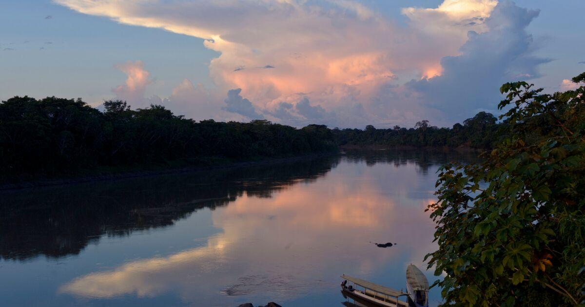 Le géant Amazon remporte une victoire contre le fleuve Amazone