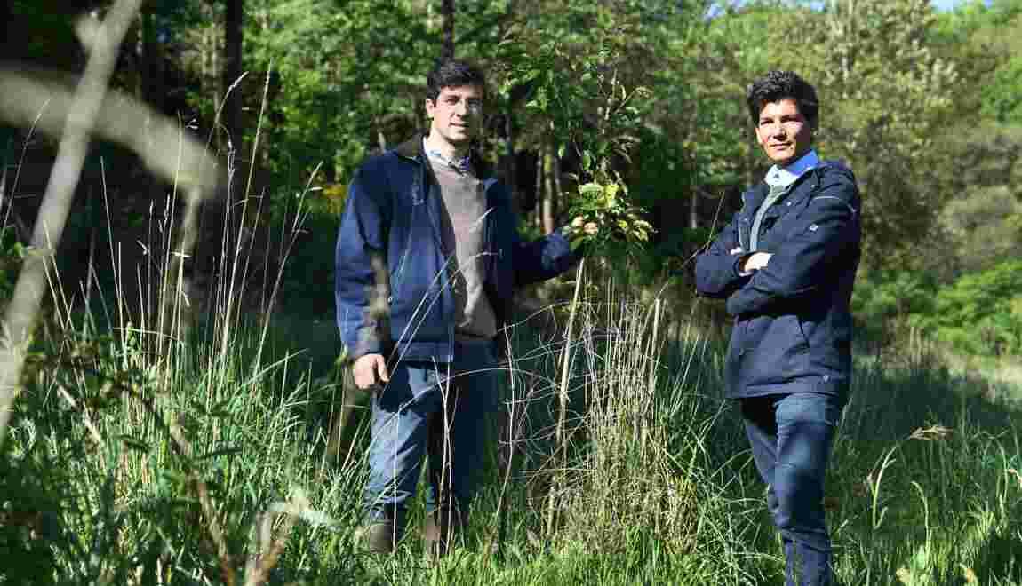 EcoTree, la start-up bretonne qui vend des arbres pour sauver les forêts