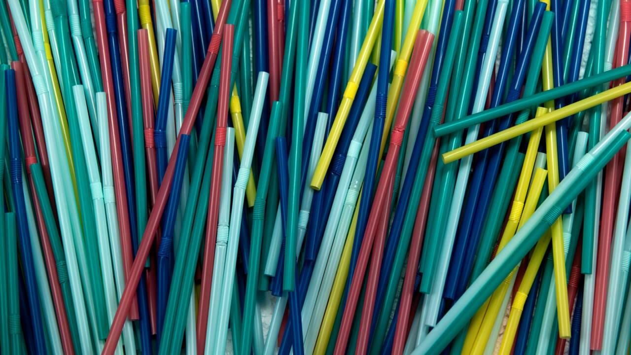 Le Canada veut bannir les plastiques à usage unique dès 2021