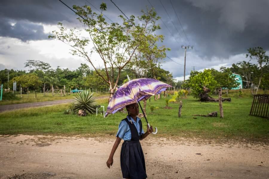 Les villages créoles protègent leur environnement