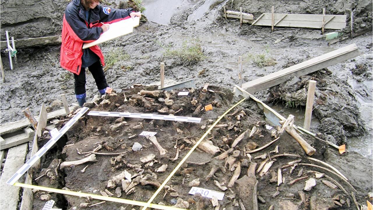 En Sibérie, des dents vieilles de 30000 ans révèlent l'existence d'une population humaine inconnue