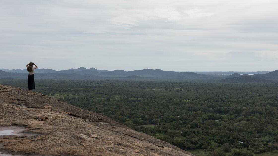 Le Sri Lanka va interdire les tronçonneuses pour protéger ses forêts