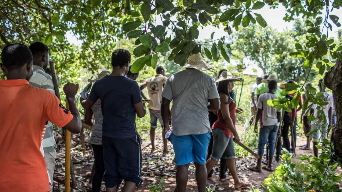 Au Bénin, immersion dans un camp d'entraînement intensif à l'agriculture bio
