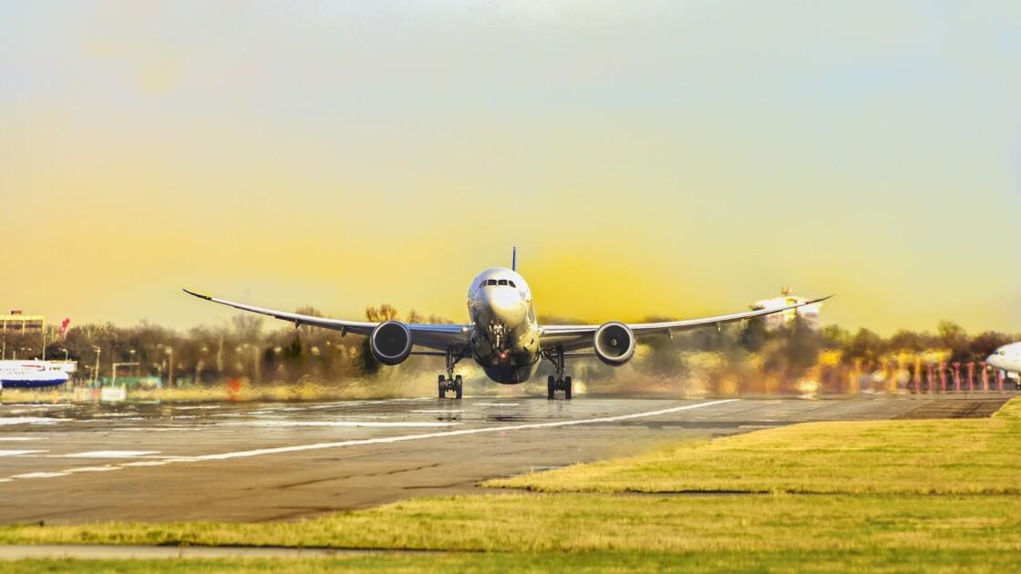Planter des arbres contre un trajet en avion : la compensation carbone peut s'avérer dangereuse