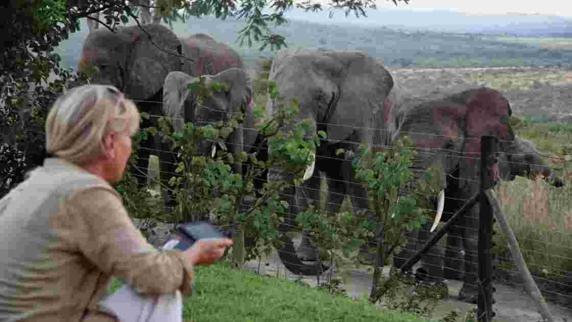 Rencontre avec Françoise Malby-Anthony, cette Française qui a fondé une réserve animalière en Afrique du Sud