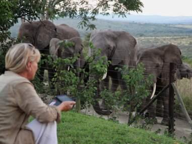 L'histoire de cette Française qui a fondé une réserve animalière en Afrique du Sud