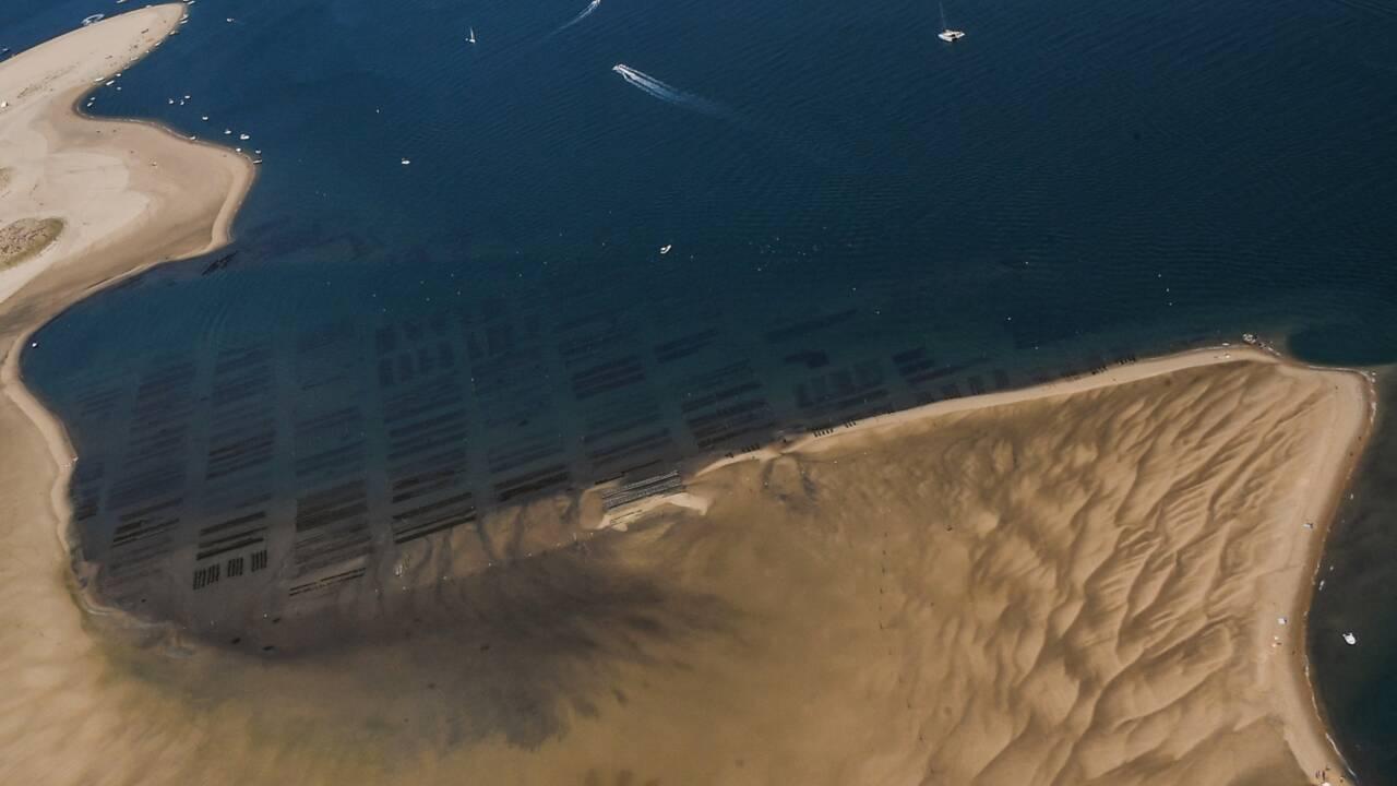 Lentement grignoté, le Cap Ferret se bat sans relâche contre l'érosion
