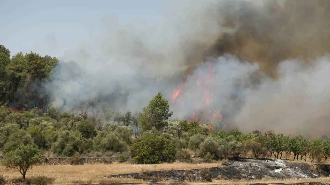 Incendie, manque d'eau, risques sanitaires: l'Europe face à des records de chaleur