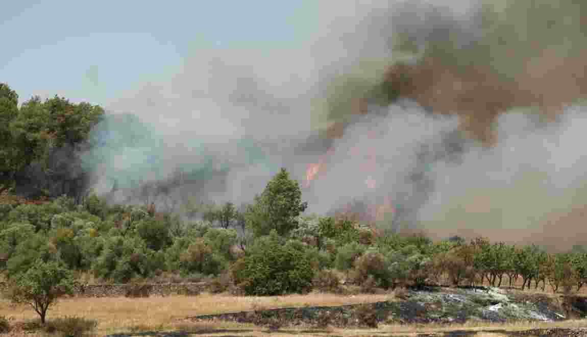 Un incendie hors de contrôle en Catalogne, 6.500 hectares ravagés