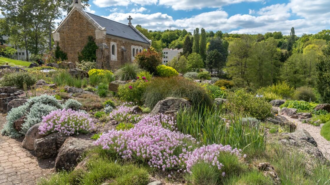 Meurthe-et-Moselle : à Villers-lès-Nancy, l'extraordinaire jardin botanique de Jean-Marie Pelt