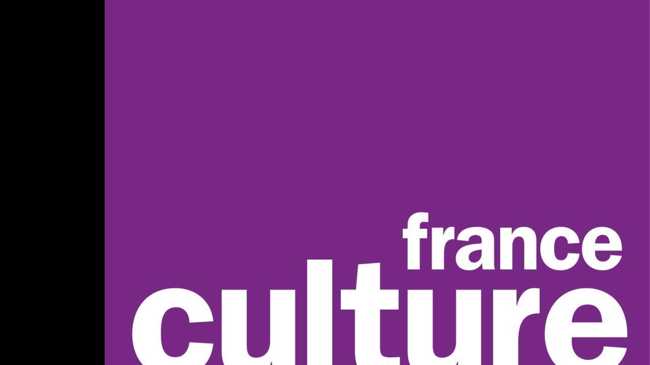 Podcast : immersion en Terre Adélie cet été sur France Culture