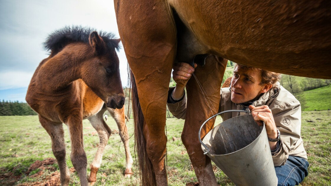 Bas-Rhin : à Bourg-Bruche, dans la vallée des Amish
