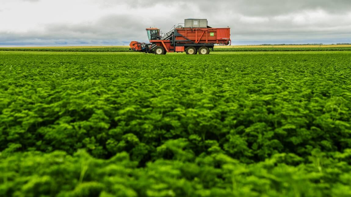 L'OCDE conseille de réorienter les subventions à l'agriculture vers le climat