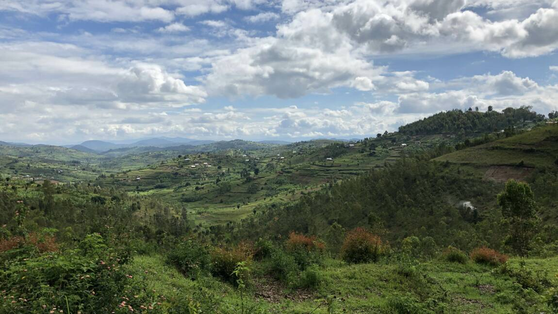 Rwanda : le nouvel eldorado touristique africain