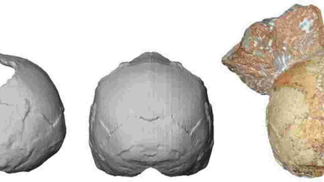 L'Homo Sapiens serait arrivé en Europe plus tôt que ce qu'on imaginait