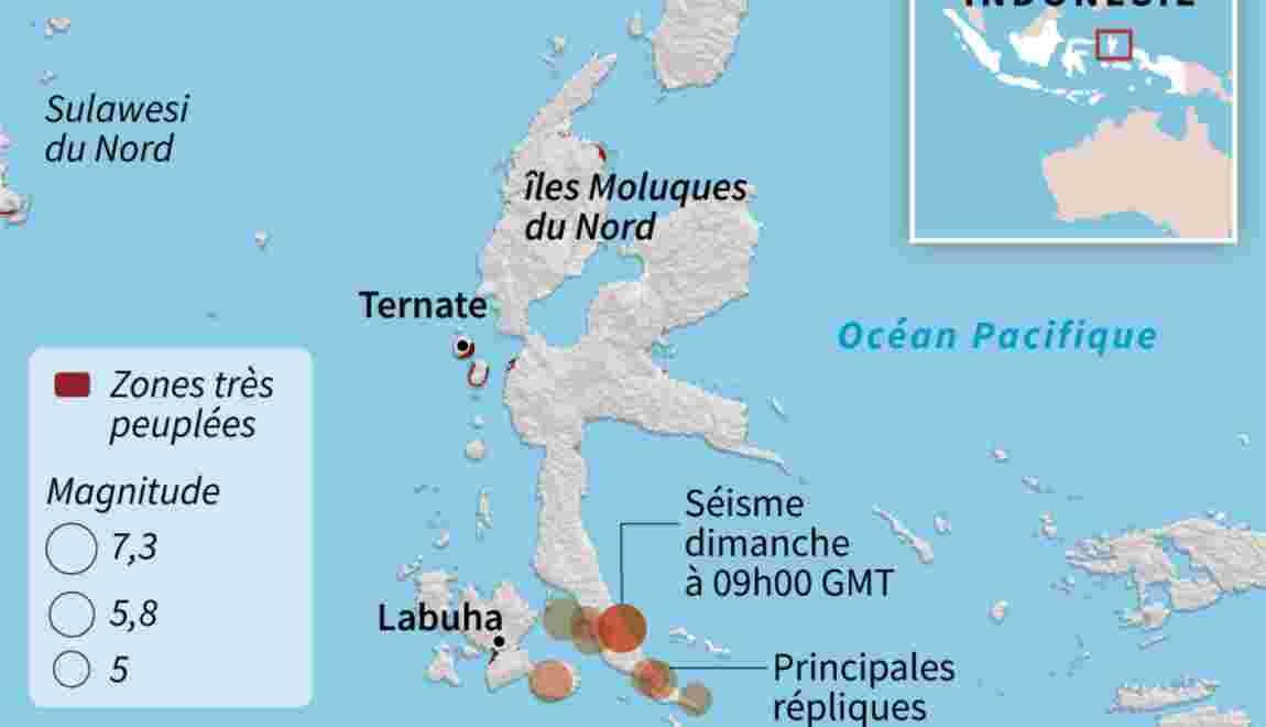 Indonésie: un séisme de magnitude 7,3 frappe les îles Moluques