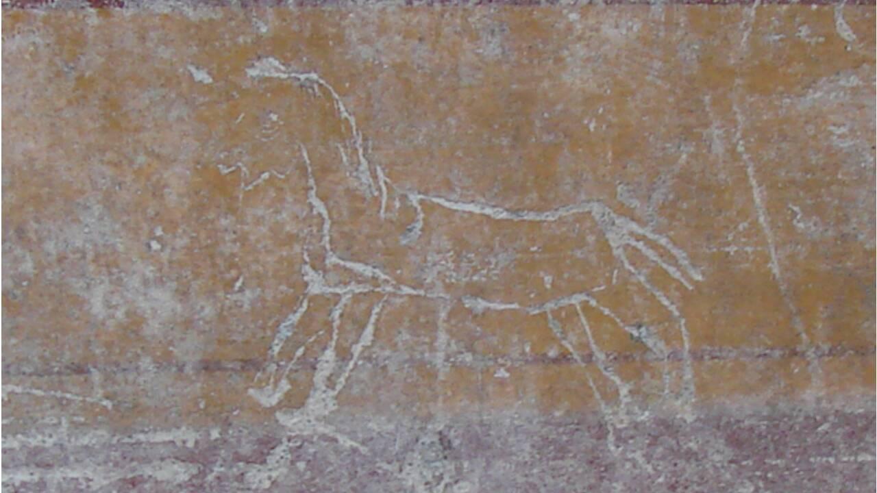 Des graffitis pour comprendre l'histoire de Pompéi