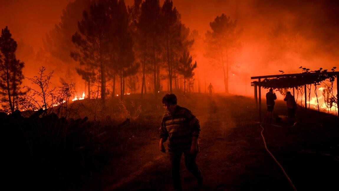 Portugal: plus de mille pompiers luttent contre des feux de forêt