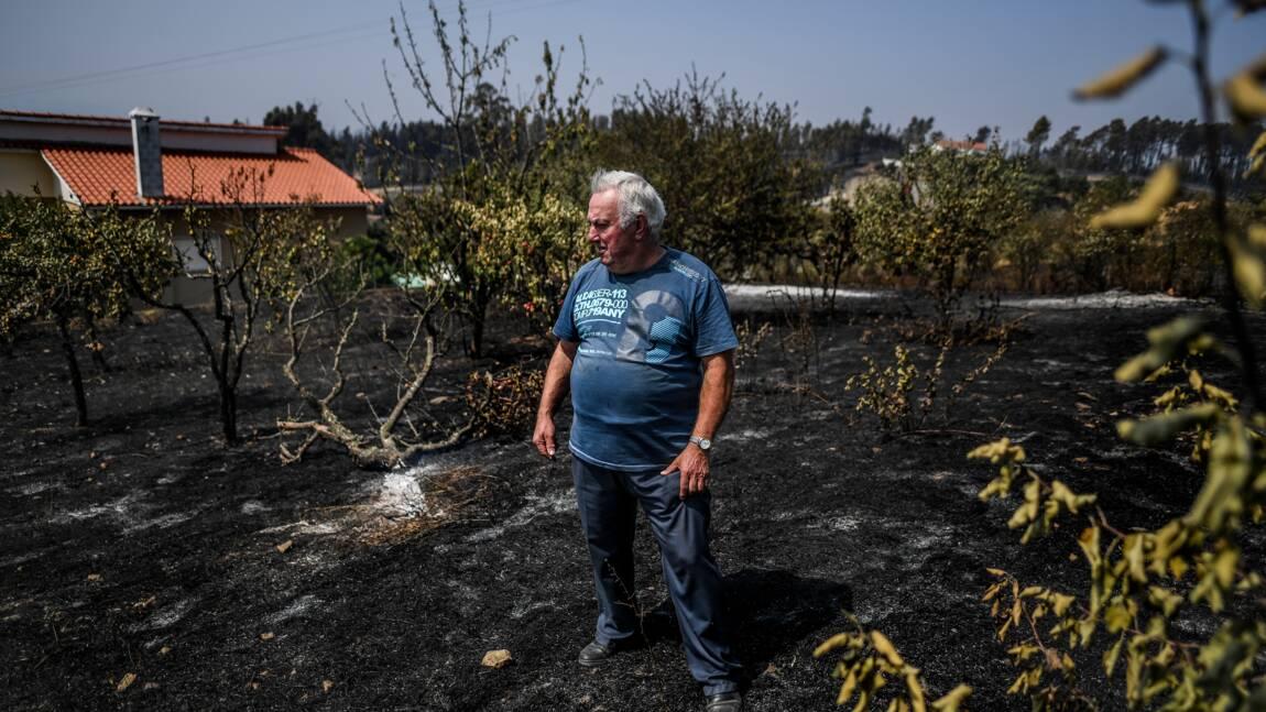 Portugal: attisés par le vent les incendies ont repris