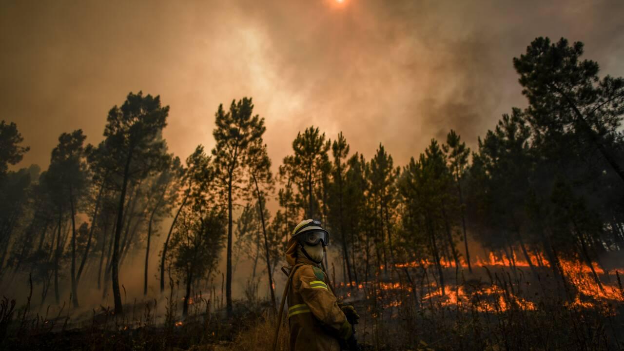 Portugal: les pompiers espèrent venir à bout des incendies
