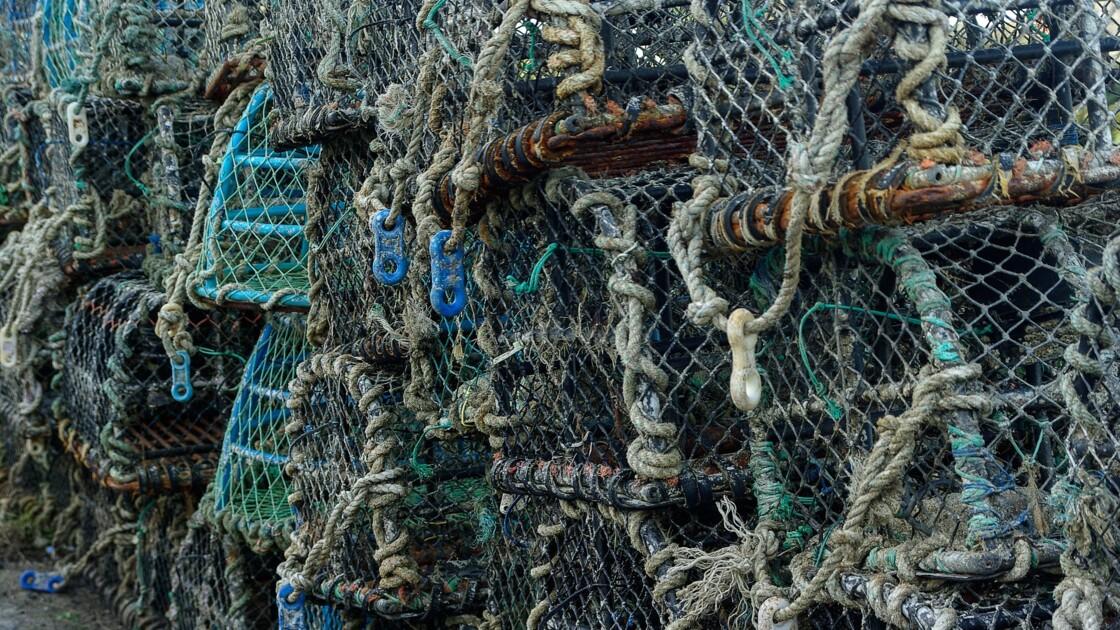 Une opération de nettoyage inédite au large des côtes normandes