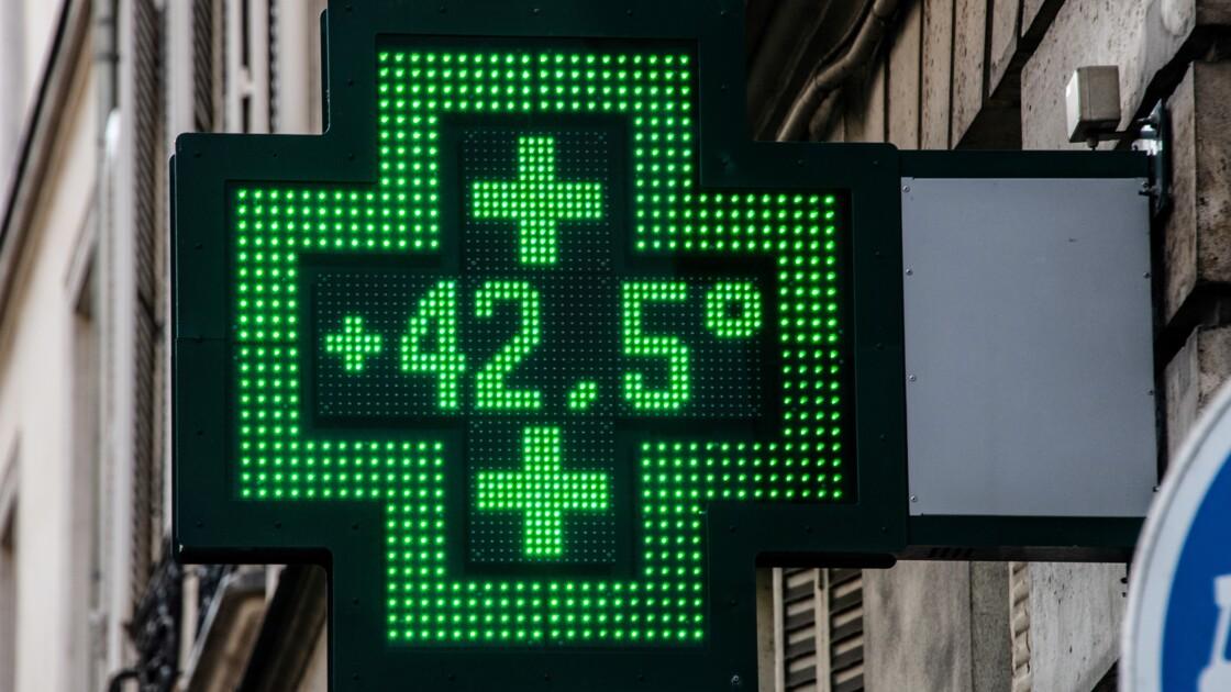 Climat: de l'Europe au pôle Nord, des records de chaleur en 2019