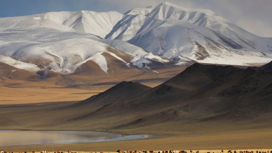 Douze expériences à vivre en Mongolie sur les traces de nos reporters