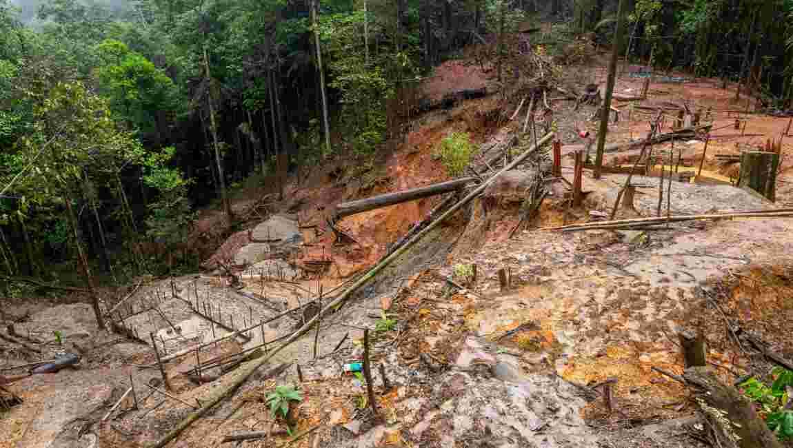 Guyane française : émotion après la mort d'un chef autochtone au Brésil