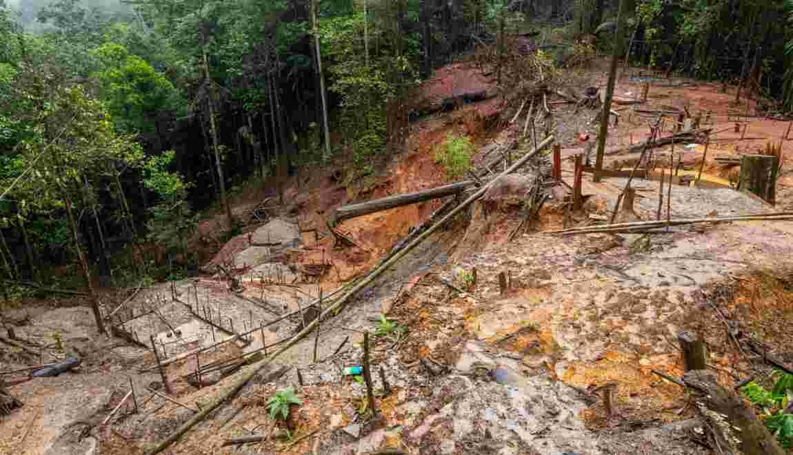 Brésil : le corps du chef autochtone tué la semaine dernière sera autopsié