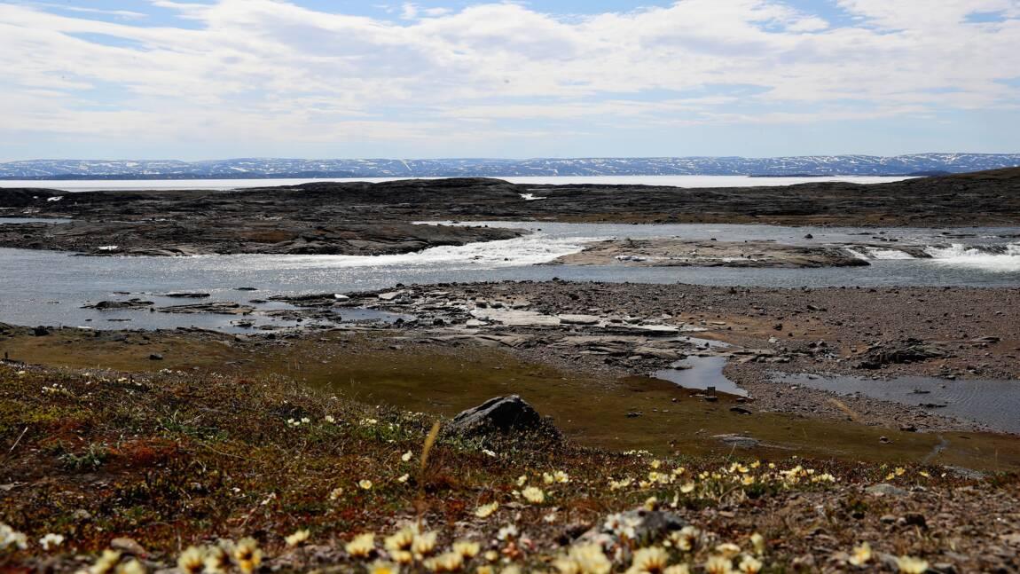 Le Canada étend la protection des zones marines en Arctique