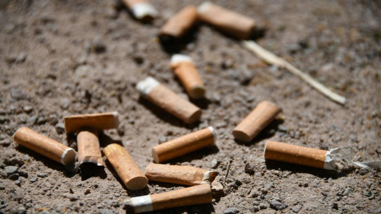 Feux de forêt: un maire interdit de fumer en voiture