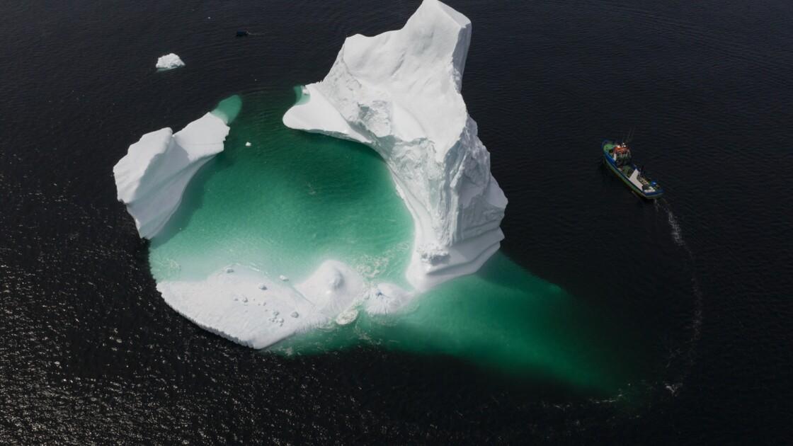 Profession: chasseur d'icebergs au Canada