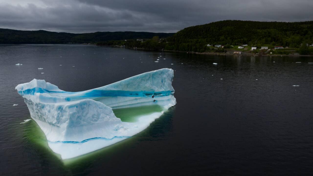 """Au Canada, les touristes se bousculent dans le """"couloir des icebergs"""""""