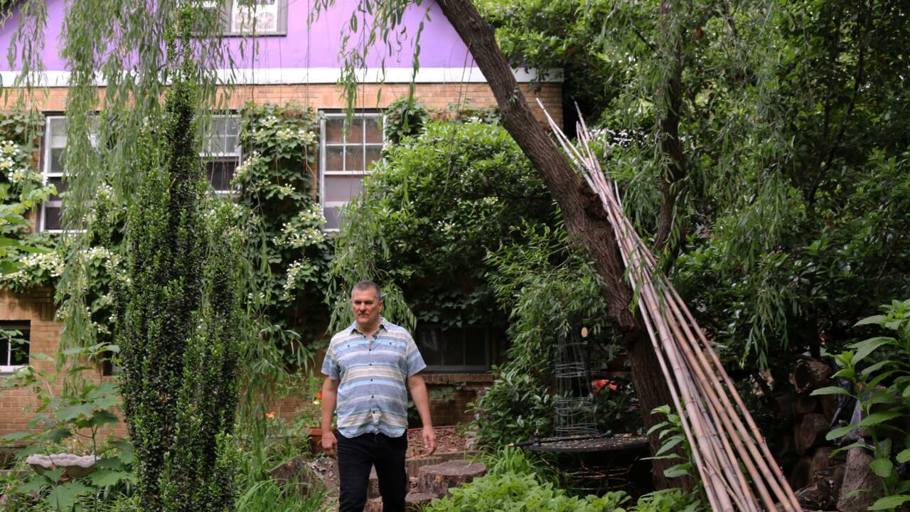 Retour à la nature : à Washington, des citadins transforment leur jardin en jungle sauvage