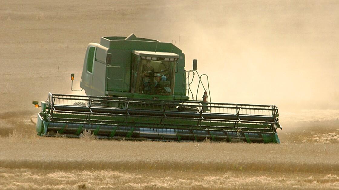 Climat, usage des terres et sécurité alimentaire : le nouveau rapport du Giec en cinq points