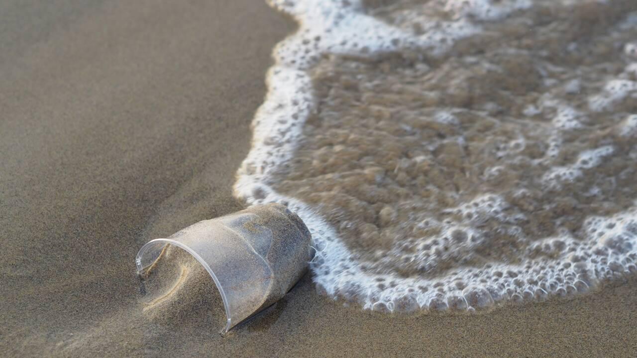 Des plages sans plastique, c'est possible ?