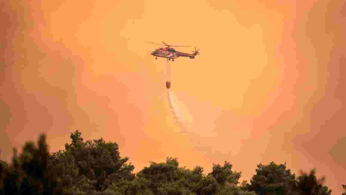 """Grèce: """"catastrophe écologique"""" sur l'île d'Eubée ravagée par les flammes"""