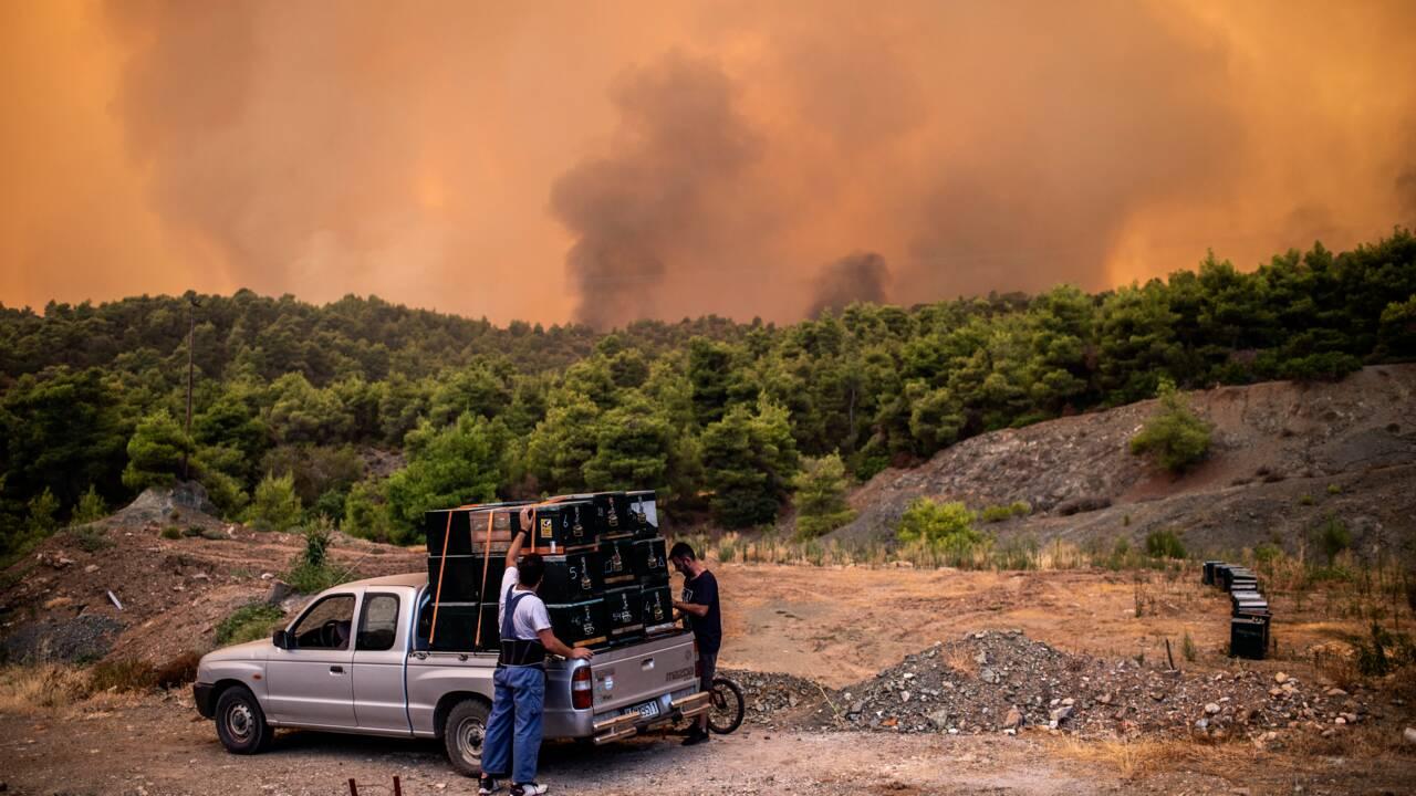 L'île grecque d'Eubée en proie à un violent incendie