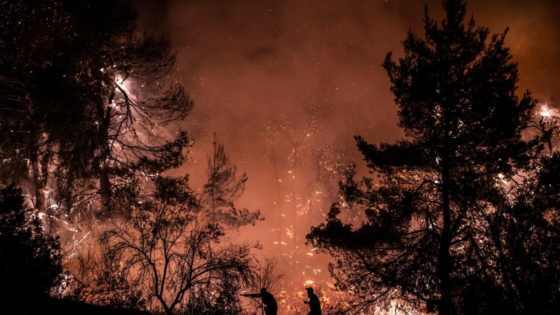 """""""Catastrophe écologique"""" sur l'île grecque d'Eubée, ravagée par les flammes"""